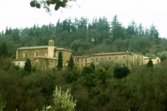 The Sargiano Monastery surrounded by the woods