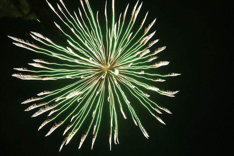 Luce e Suono per celebrare l'avvento del Natale e del nuovo anno